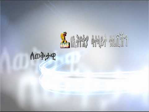 ESAT New Transition 3D Identity ed Ethiopian