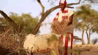 Best New Ethiopian Traditional music 2014 Abdy Jemal Habiboye