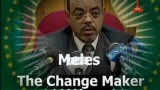 Meles The change Maker!