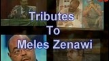 Tributes To Meles Zenawi August 27 / 2014