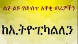 Ethiopikalink final on KonjoTube