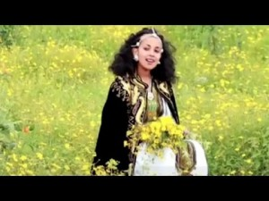 Watch AwdeAmet – Ethiopian Tigrigna Music 2015 on KonjoTube