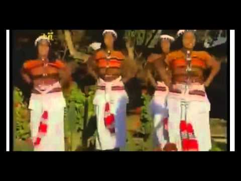 Watch Ethiopian Music Bale Oromo New and hot on KonjoTube | KonjoTube